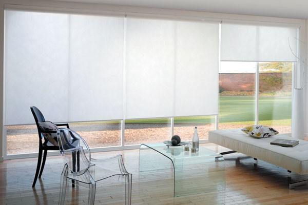 Manual Double Roller Blind